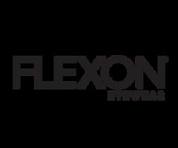 Flexon logo 300x250 copy.png