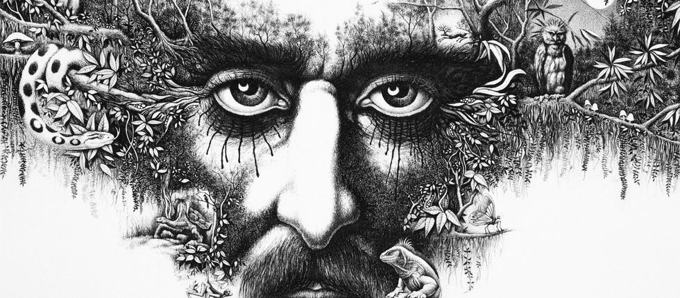 La Mirada de los Bosques - Carlos Monsalve