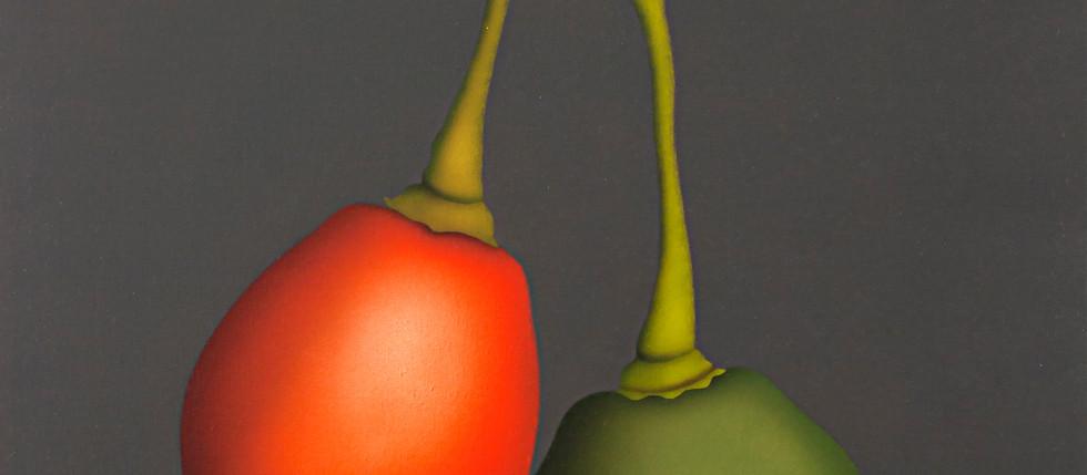 Tomates - Elizabeth Taipe