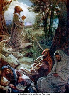 Reflections on the First Sorrowful Mystery (Praying in the Garden of Gethsemane)
