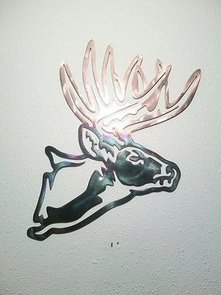 Poser Buck