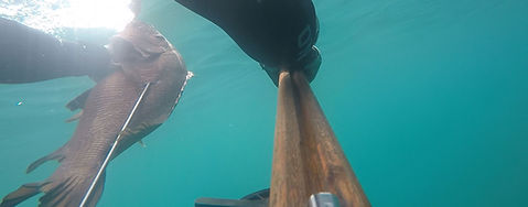 excursions-freediving-fishing-glamping-a