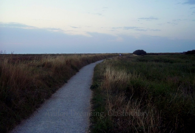Salt marshes pathway Brancaster