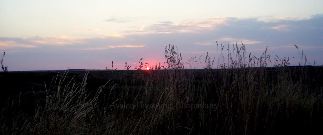 Salt marshes Brancaster Norfolk
