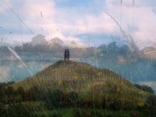 Glastonbury Tor buttercups collage