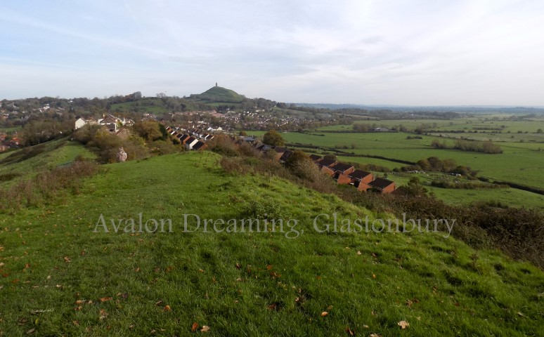 Glastonbury Tor from Wearyall Hill