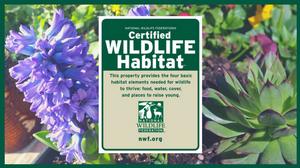Zio Garden Certified Wildlife Habitat by NWF
