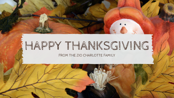 Zio Hours for Thanksgiving 2015