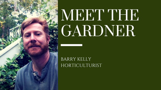 Zio Gardener Barry Kelly