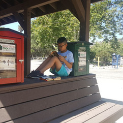 A BC kid enjoys the Little Free Library station at the Bell Canyon Lower Bus Stop