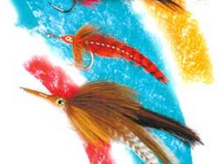 Fish Eyesight: Does Color Matter?