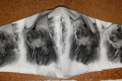Adult Size Pocketed Fitted Style Face Mask - Squirrel Fabric CF016