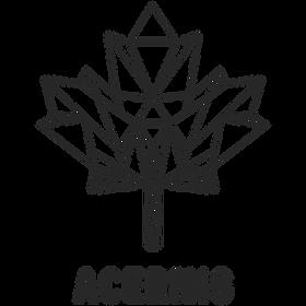 Logo Acernis Baumeister GmbH & CoKG