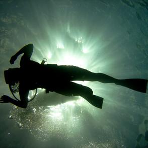Snuba Diving in Maui