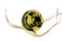 Pure-Cannaceutical-Logo-and-Oil--trans-b