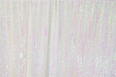 Iridescent Photo Booth Backdrop