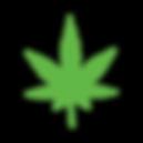Learn--CBD-Leaf.png