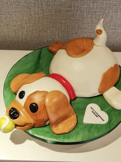 Terrier Dog Cake