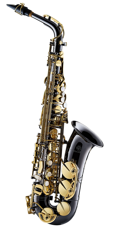 Forestone Alto Saxophone - GX Black Nickel