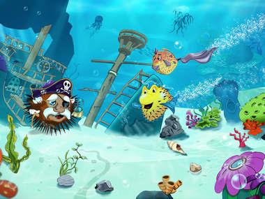 Bubbles meet sea urchin