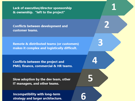 Insight: A project manager view of agile project risks and difficulties