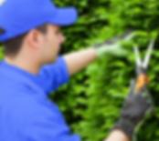 img_servicios_jardineria_slimtec.png