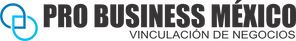 Probusiness logo.png