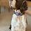 Thumbnail: Collar Grande