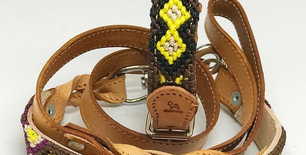 Correa y collar - Collar and Leash