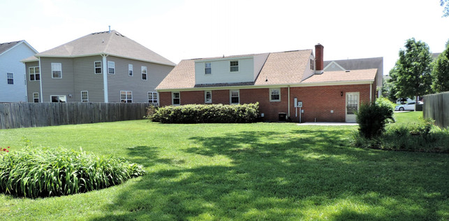 19 Backyard.JPG