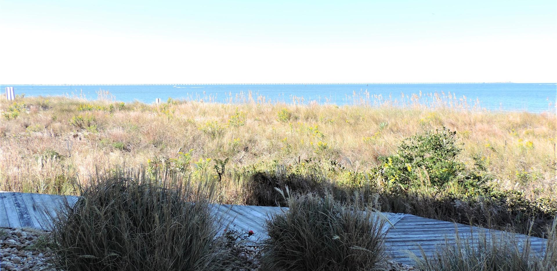 Beautiful views of Chesapeake Bay