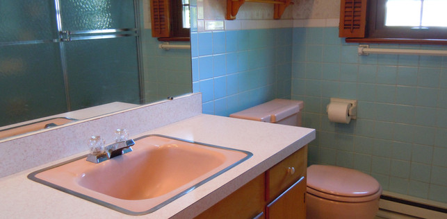 14 Downstairs Bath.JPG