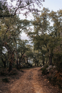 Hiking-GR7-Andalusia-Marie-Hornbergs-Pho