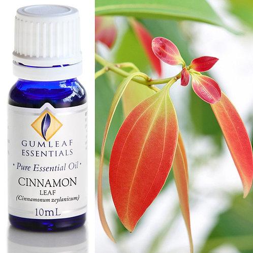 Cinnamon Leaf Pure Essential Oil - 10ml