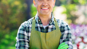 The 5 Benefits of Hiring a Domestic Couple