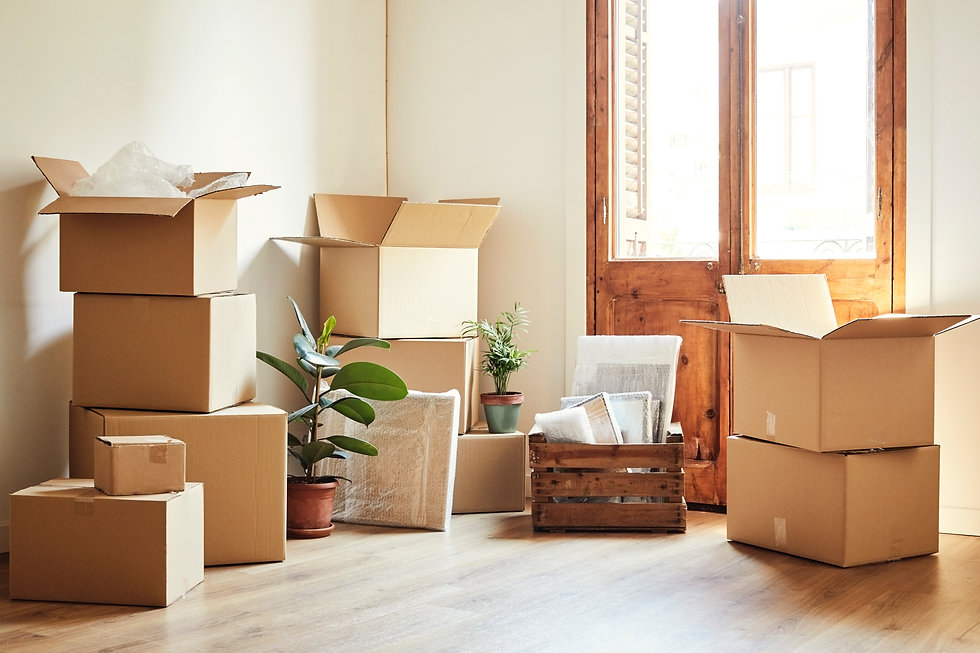 Removal Boxes in Living space