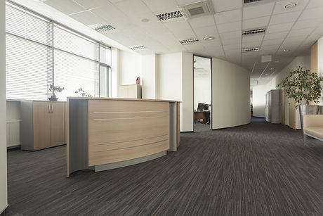 Office space and reception with patterned carpet.jpg