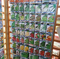 Fruit and Vegetable Plant Seeds.jpg