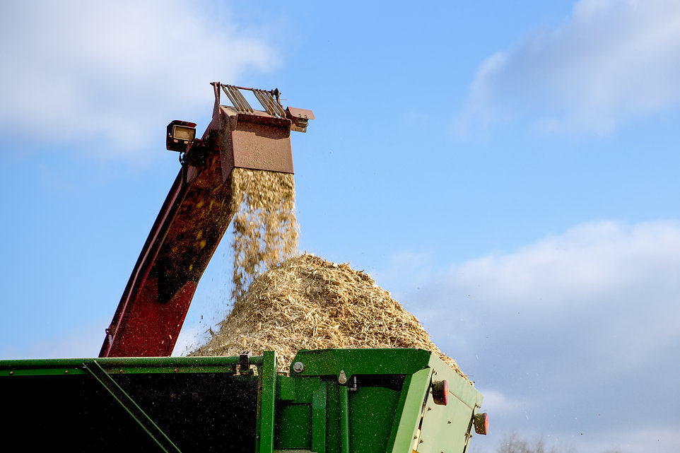 Wood chipper in action.jpg