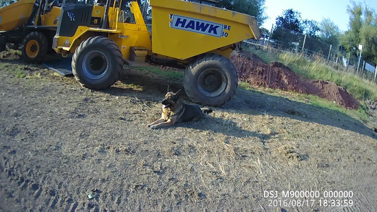 max guarding dumper 004.JPG
