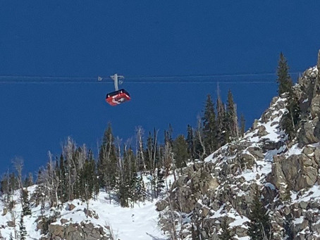 10 Insider Tips To Get You Dreaming of Jackson Hole