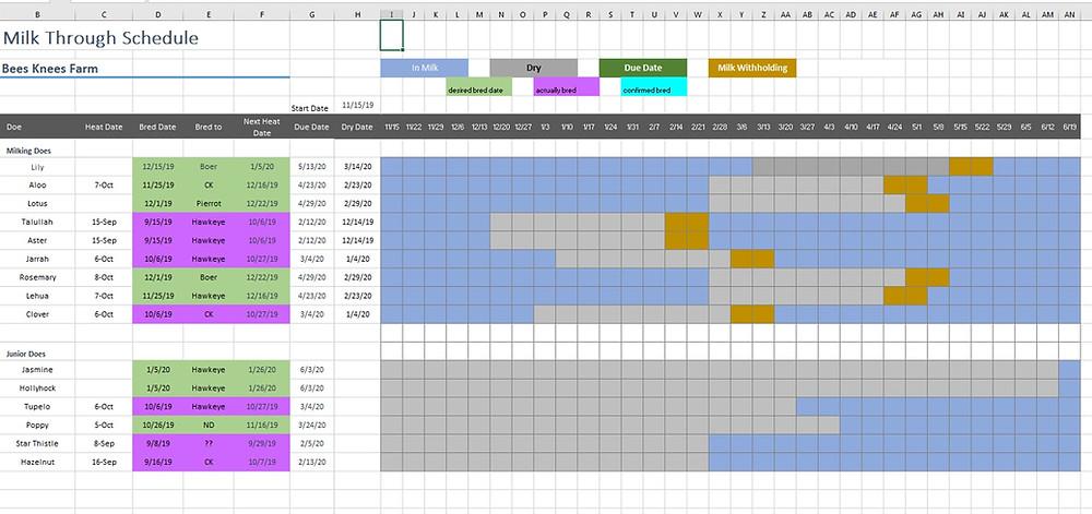 Dairy breeding planning gantt chart