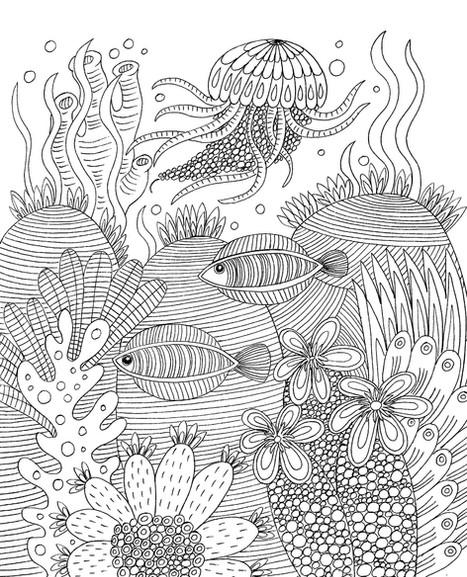 Jellyfish - Kay Widdowson