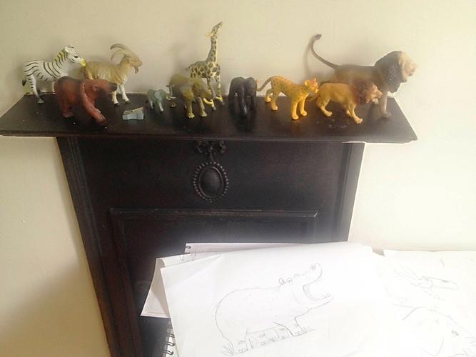 Animals in studio - Kay Widdowson