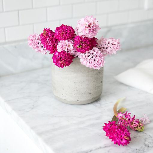 SocialSquares_garden_fresh_kitchen_021-2