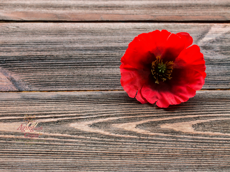 Lest they forget – interviewing your elderly veterans to share their memories