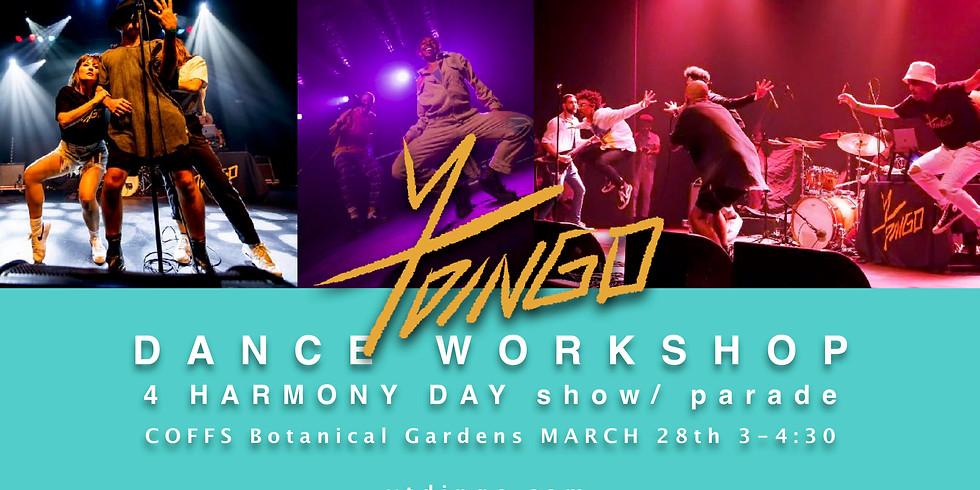 YT DiNGO Dance Workshop | Coffs Harbour