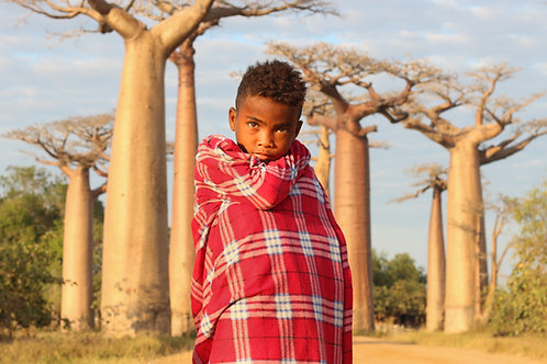 The baobab guardian