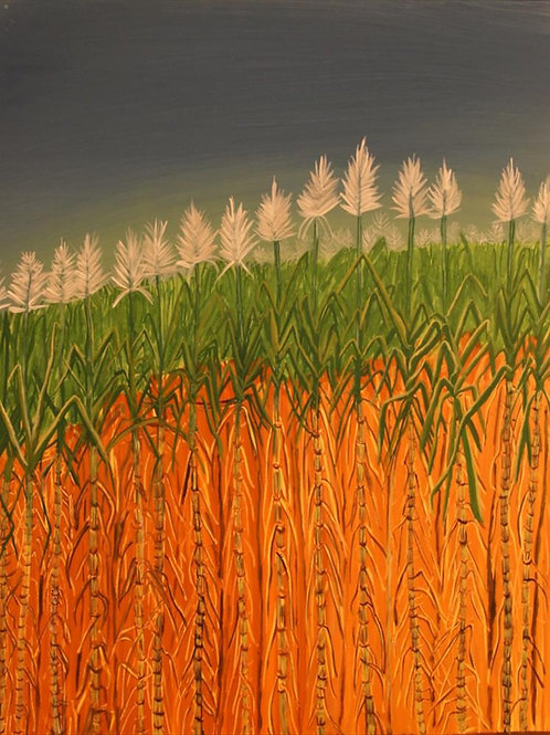 Painting: 'Sugar Cane'