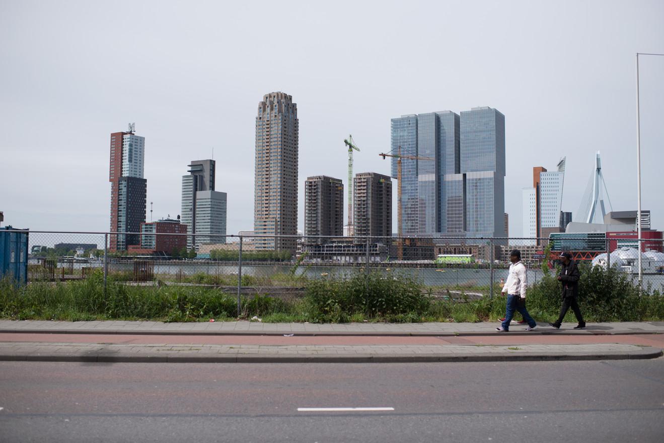Larice Schuurbiers Rotterdam.jpg